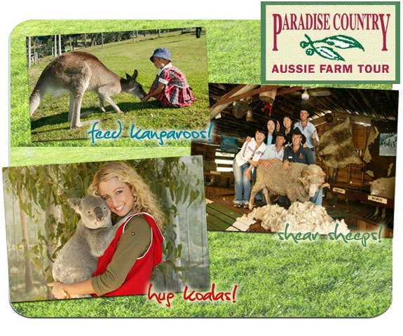 Paradise Country Farm